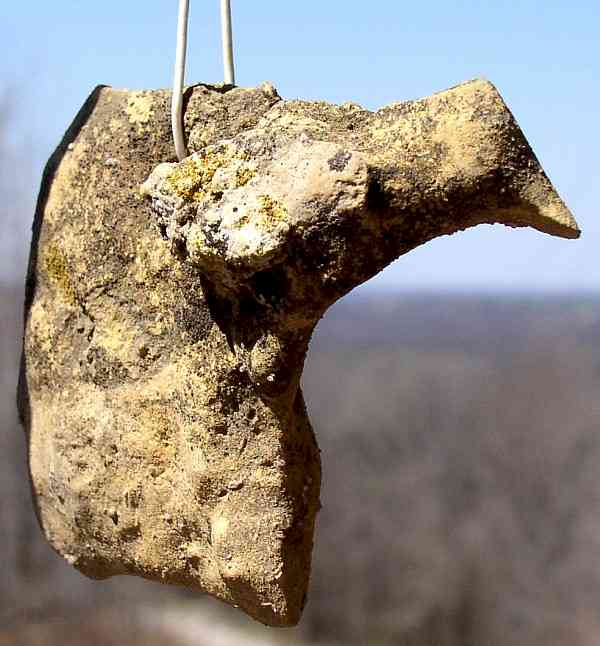 Bird Pendant - Artifact from Day's Knob Archaeological Site