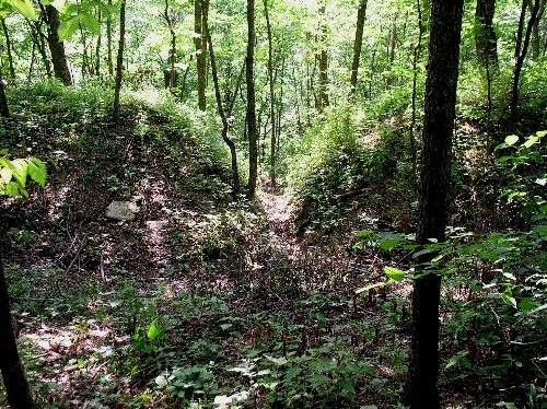 Earthwork Gateway at 33GU218 (Day's Knob Archaeological Site)