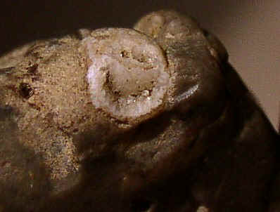 Flint Figure with Some Artificial Enhancement - Day's Knob Archaeological Site