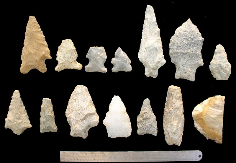 Early-to-Middle Archaic Points - Terry Deal Finds, North Carolina