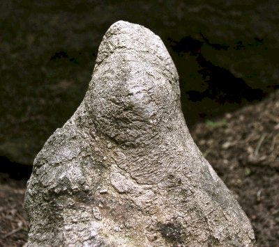 Bird-Venus Statue - Day's Knob Archaeological Site